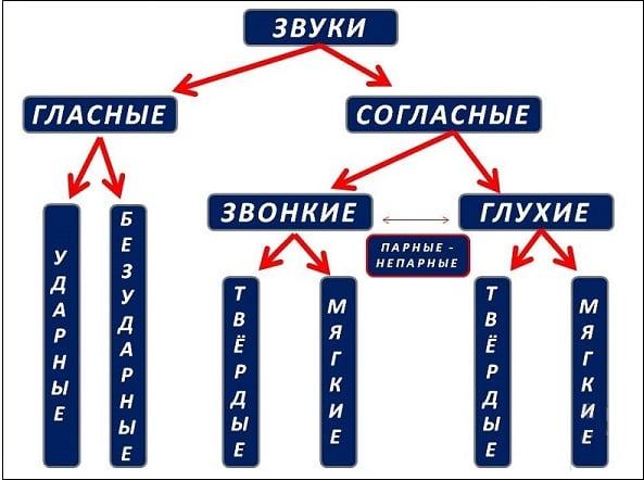 Схема деления звуков