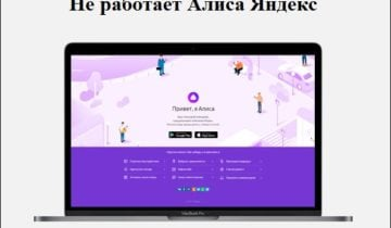 Не работает Алиса Яндекс