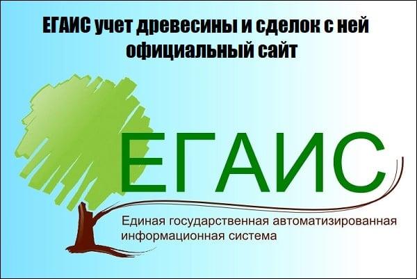 ЕГАИС учёт древесины