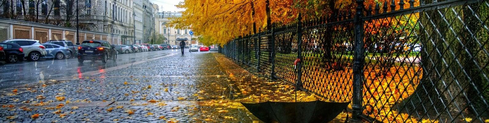 Пример обложки Осень
