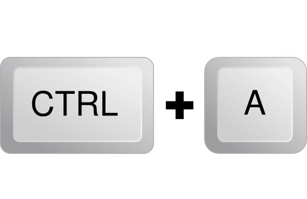 CTRL+A