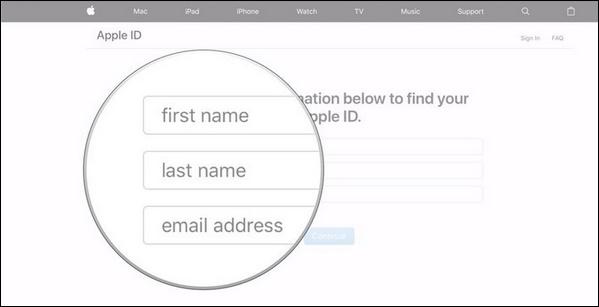 Поля для ввода данных пользователя