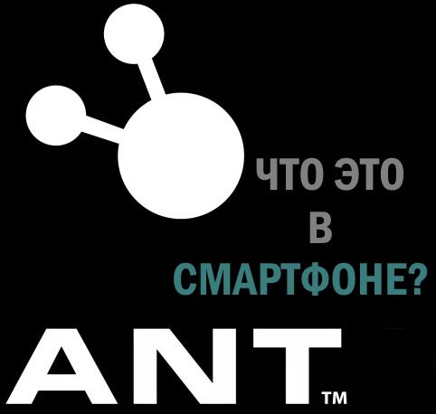 Картинка ANT