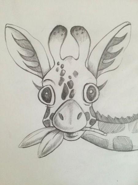 animal Рисунки карандашом для срисовки очень легкие и красивые