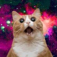 Кот аватар Стим