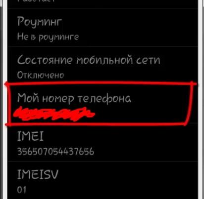 Определить номер телефона