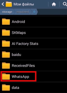 "Папка ""WhatsApp"""