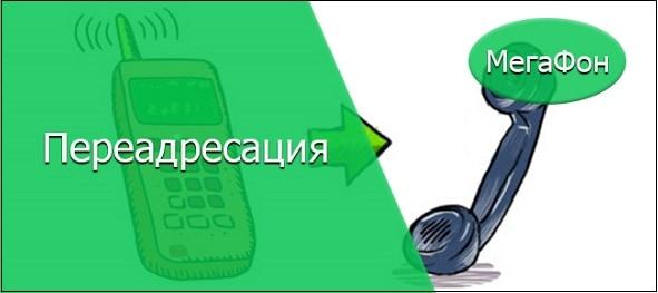 Сделать переадресацию на Мегафоне