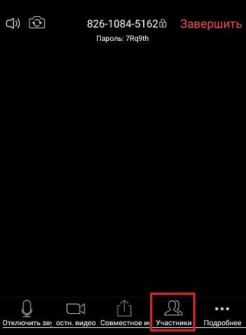 """Опция """"Участники"""" в мобильном приложении Zoom"""