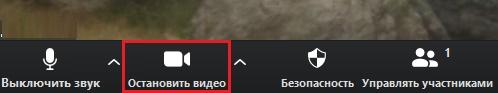 """Опция """"Остановить видео"""" в Zoom"""