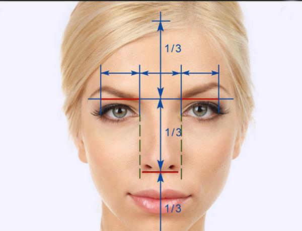 Фото лица девушки с пропорциями