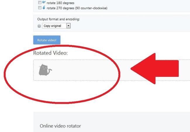 Процесс обработки видео Ezgif
