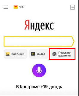 Опция поиска по картинке в Яндекс