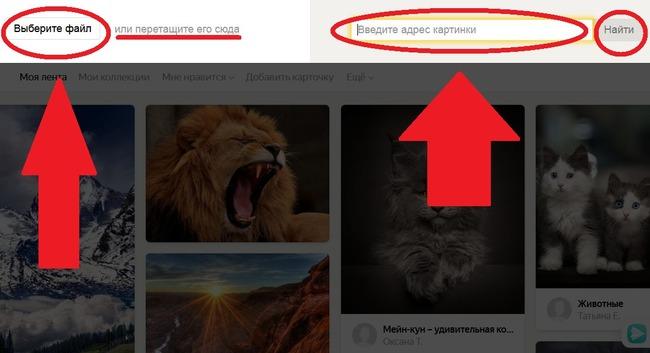 Загрузка изображений в Yandex-поиск