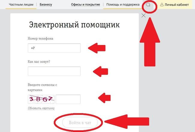 Окно для заполнения данных при переходе к электронному помощнику Билайн