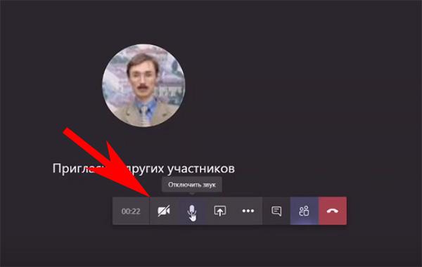 Кнопка для отключения изображения говорящего