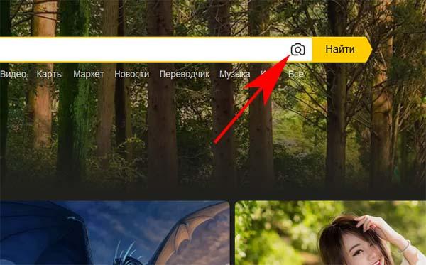 Кнопка добавления фото