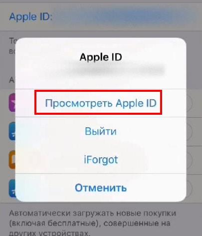 Посмотреть Apple ID