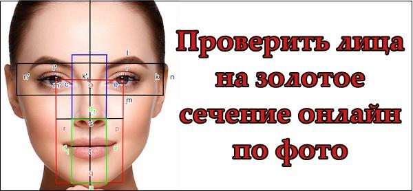 Заставка проверка лица на золотое сечение