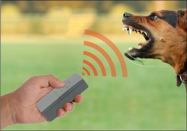 Устройство отпугиватель собак