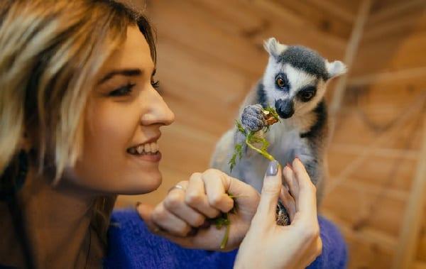Фото девушка и животное