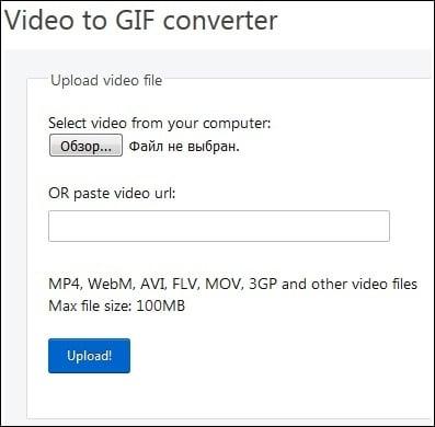 """Вставьте полученную ранее ссылку в окно """"paste video url"""""""