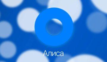 Приложение Алиса от Яндекс