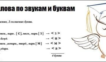 Разбор слова по звукам и буквам