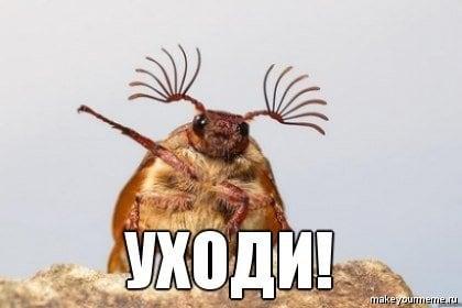 Добавляем картинку в беседе в Вконтакте