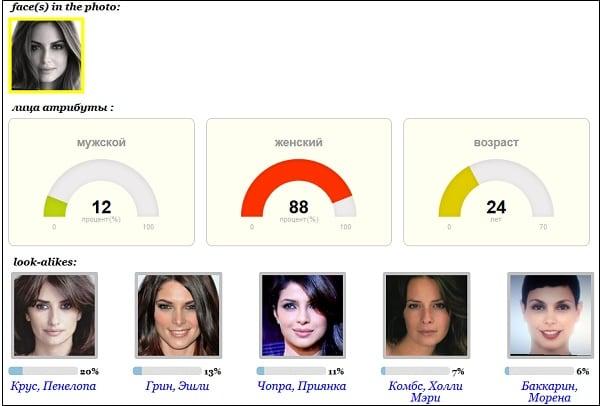 Поиск соответствий по чертам лица на фото в pictriev.com