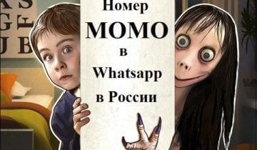 номер Момо